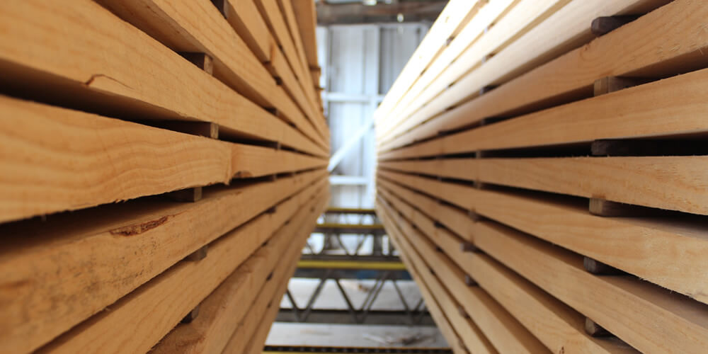 Lumber And Saw Mill Industries Are Serviced By Boyd Wilson Electrical Ltd In Marlborough NZ